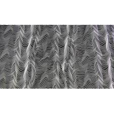 RJ1422-WB1 Gray Matter - Zig Zag - White on Black Fabric 3