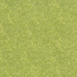 2201-004 Jinny Beyer Palette - Spring Green Fabric
