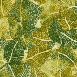 3359-002 Urban Garden - Leaf Study - Sprout Green Fabric