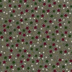 3102-001 Frosty Friends - Starry Sky - Sage Fabric