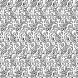 RJ505-BW2 Bare Essentials Deluxe - Paisley - Black & White Fabric