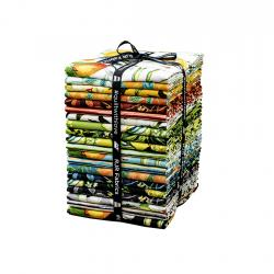 RJ1400P-FQB Citrus Garden Fat Quarter - Bundle