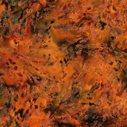 RJ1004-PU3B Nature Walk - Branches - Pumpkin Batik Fabric