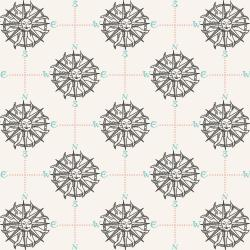 RJ2302-PA2 Smooth Seas - Compass - Pacific Fabric