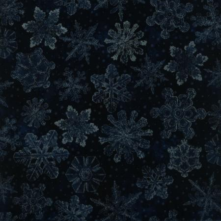 1557-004 Holiday Accents Classics Navy Fabric
